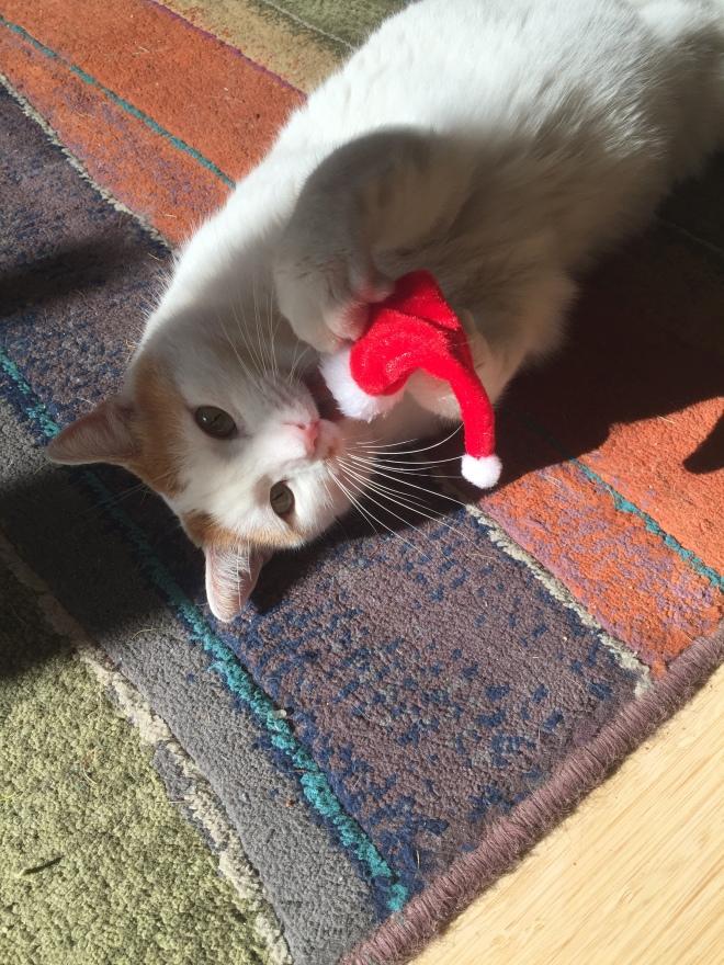 mouse holding santa hat