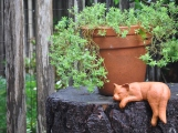 Charming kitty pottery
