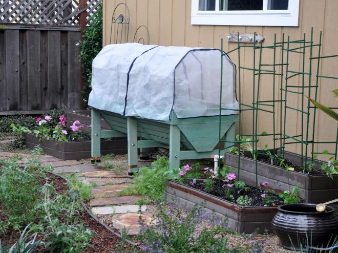 vegetable garden march 21 2016-003