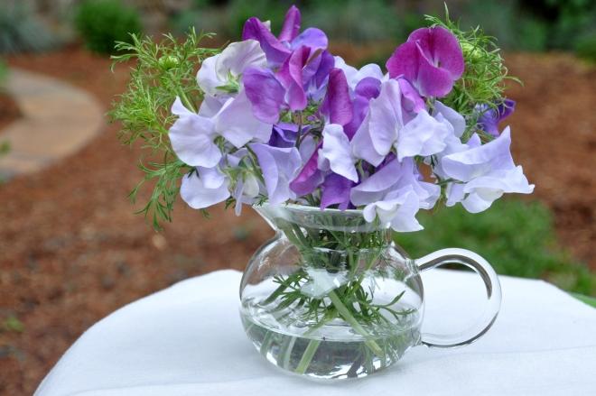 sweet peas in vases