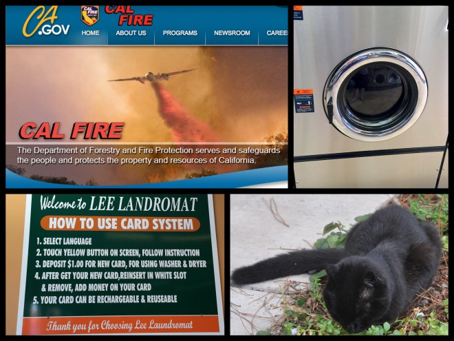 cal fire collage