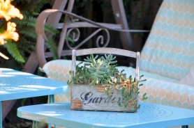 Succulents planted in a faux vintage box