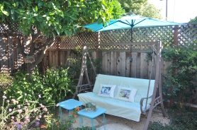 My garden oasis