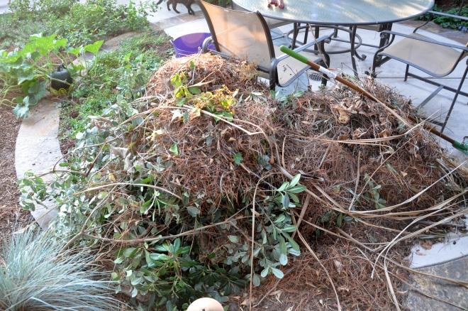 garden waste pile