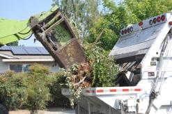 Yard Waste Disposal