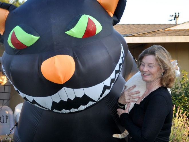 inflatable-cats-and-mouse