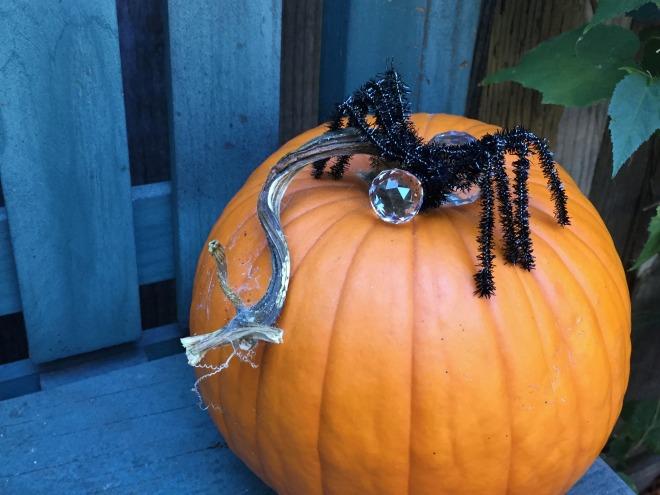 pumpkin-with-paulines-spider