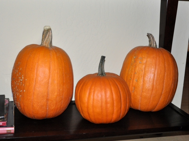 three-pumpkins
