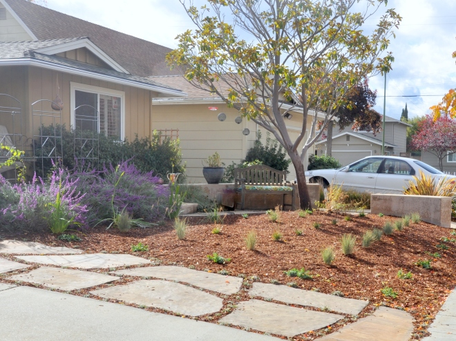 2015-new-landscaping-front-garden