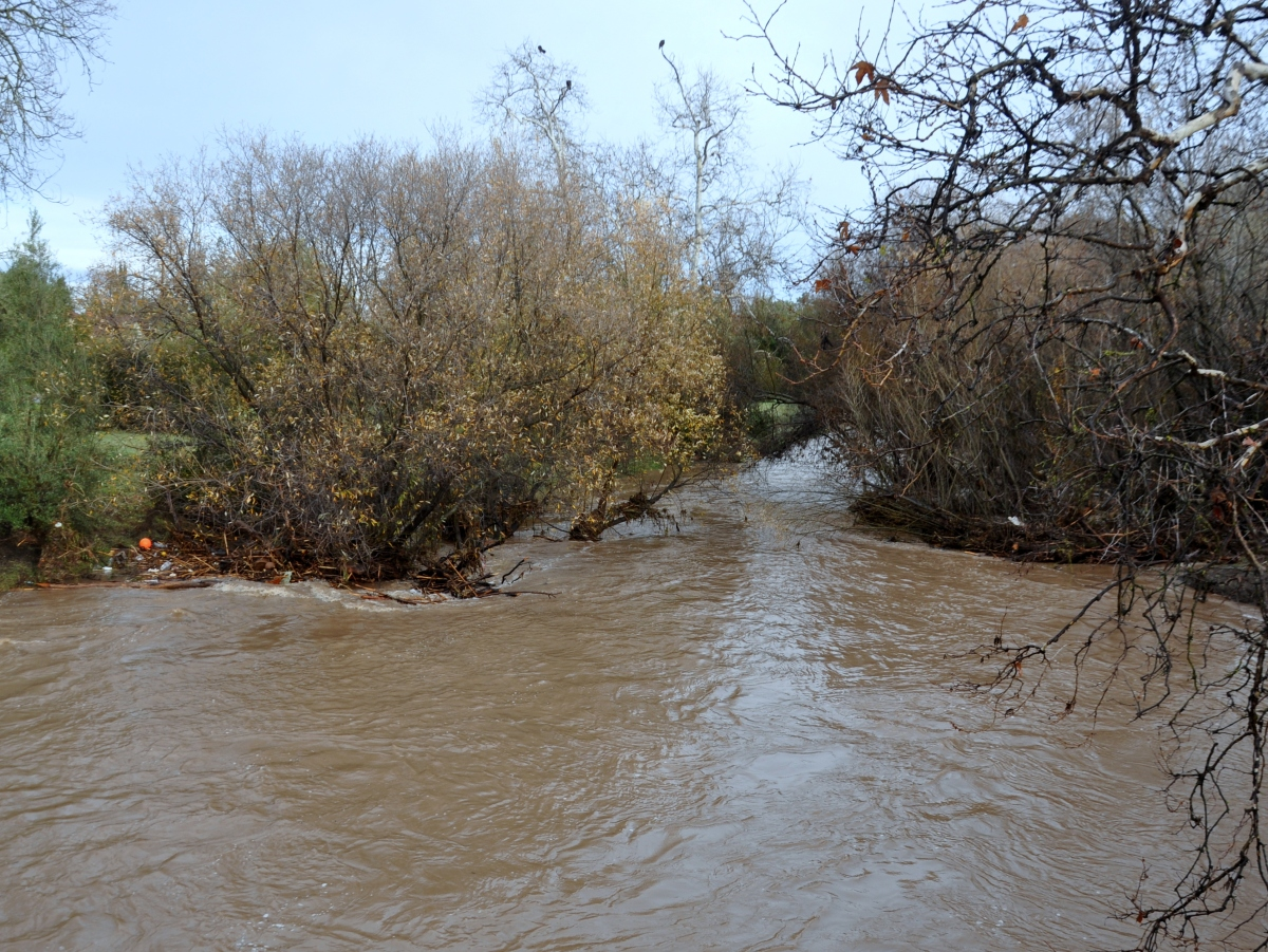 High water levels