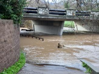 Flooded walkway