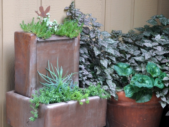 copper-planter-with-succulents-september-2016