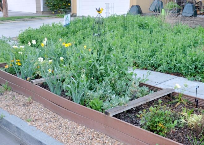 curb garden