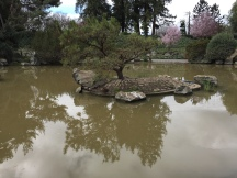 Japanese Friendship Garden and Koi Pond