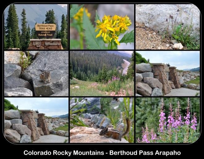 Colorado Rocky Mountains, Berthoud Pass Arapaho