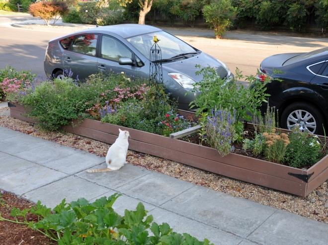 Mouse curb garden