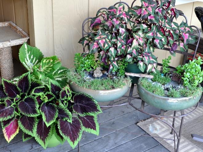 miniature peace garden
