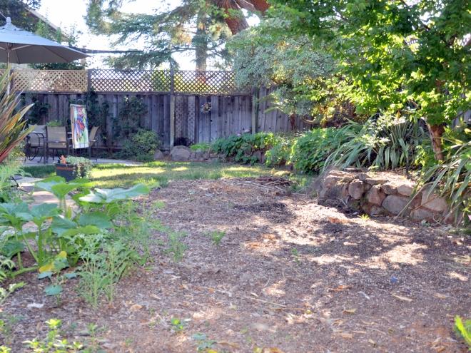 sheet mulched back garden