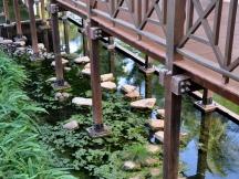 Man-made pond near the Mikado restaurant