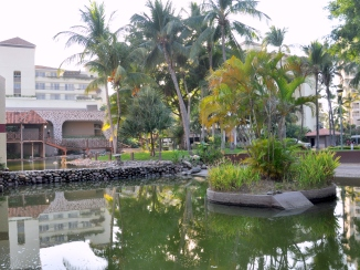 Turtle pond at the Marriott hotel