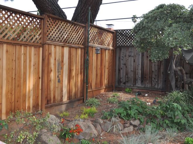 back corner of garden