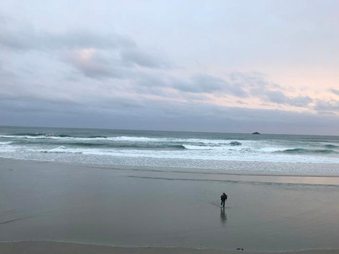 St. Claire Beach, Dunedin, New Zealand