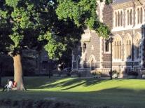 A peaceful campus setting