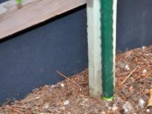 Garden stakes secure trellis