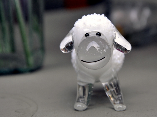 New Zealand glass sheep