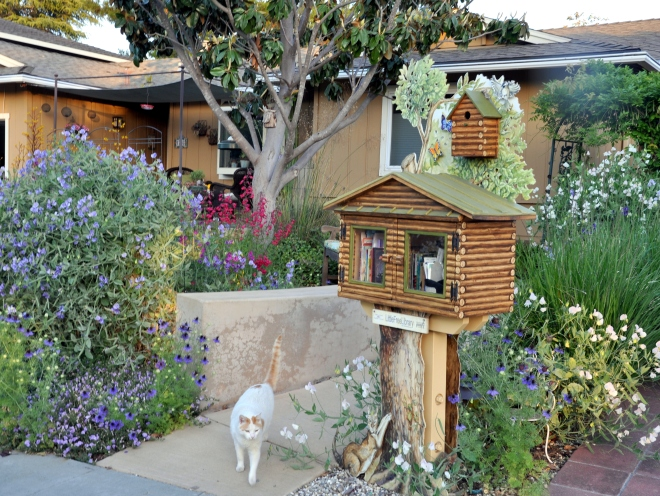 Little Free Library San Jose