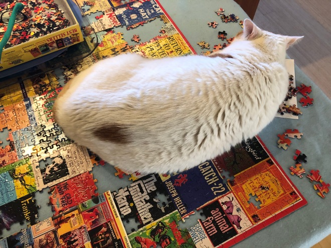 Mouse the cat on a jigsaw puzzle
