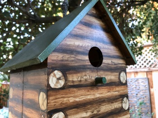 LFL birdhouse in back garden
