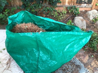 Ready for compost pick-up